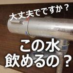 【この洗面所の水のむんですか???】 東南アジアの外国の友人が日本に遊びに来た。 そしてビジネスホテルで、 この洗面所 水飲んだら大変な事になるんじゃないですか?と。日本の水