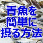 【 思うように青魚が 食べられない そんな人のためにこんな方法が】 健康的に 青魚がいいようだ。 ところが場合によってはなかなか口にすることができない。 そんな時のとっておきの方法がこれ。